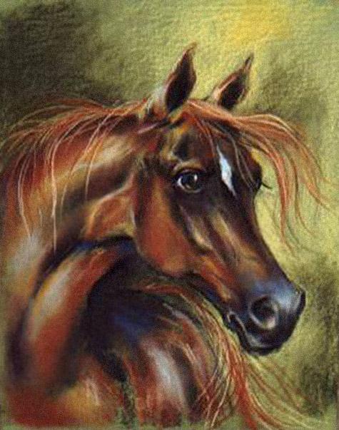 Ogier z Łącka, rysunek pastel, konie